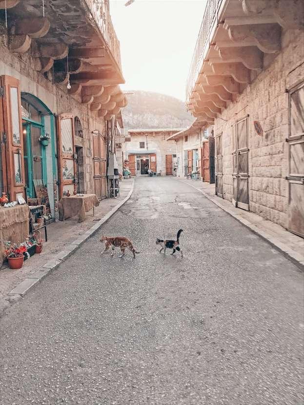travel with purpose to Lebanon